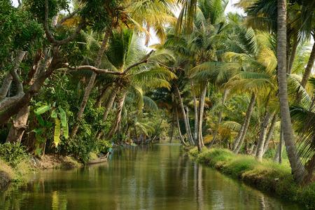 India, Coco bomen reflectie en beautifoull woonboot aan de achterkant wateren van Kerala