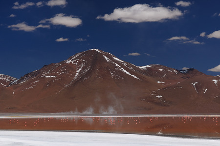surreal landscape: Bolivia - the most beautifull Andes in South America. The surreal landscape is nearly treeless, punctuated by gentle hills and volcanoes near Chilean border. The picture present lagoon Colorada