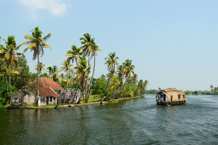 green boat: India, Coco trees reflection and beautifoull house boat at back waters of Kerala