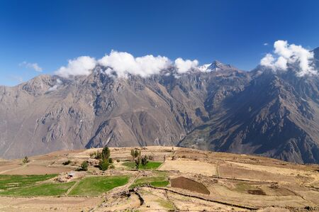 hillsides: Peru, Colca canyon. the secend wolds deepest canyon at 3191m. Terrace fields on hillsides of the canyon