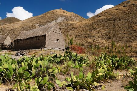 fenced in: Traditional houses in the Colca canyon fenced in from cacti,  Peru, Stock Photo