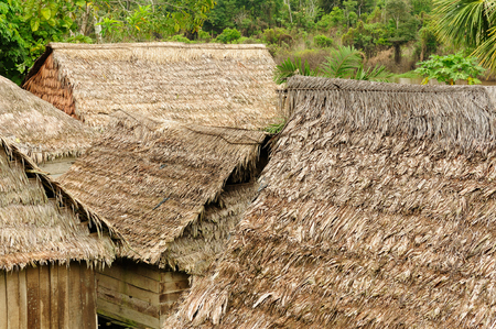 mud house: Typical indian tribes settlement in the Peruvian Amazonas