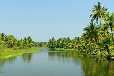 alleppey: India, Coco trees reflection and beautifoull house boat at back waters of Kerala