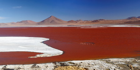 surreal landscape: South America - Bolivia. The surreal landscape is nearly treeless, punctuated by gentle hills and volcanoes near Chilean border. The picture present lagoon Colorada