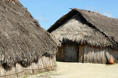 tigre: Central America, Panama, Traditional house kuna indians with the roof thatched on a Caledonia island on the San Blas archipelago