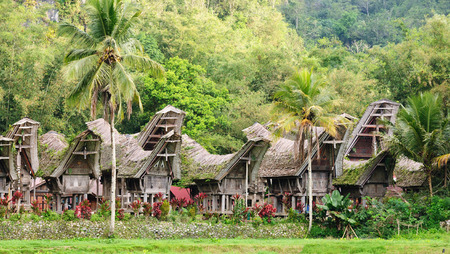 celebes: Traditional sweeping and elaborately painted houses with boat-shaped roofs in Tana Toraja. Tongkonan house on the Kete Kesu village. South Sulawesi, Indonesia.
