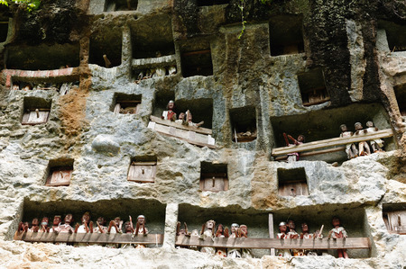 heaped: Tana Toraja - Londa, is a very extensive burial cave at the base of a massive cliff face.The entrance to the cave is guarded by a balcony of tau tau. Inside the cave is a colection of coffins with the bones either scattered or heaped in piles. South Sulaw