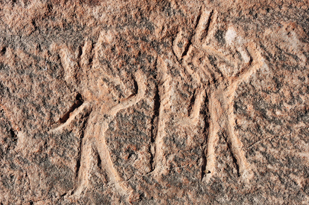 domination: Peru, Toro Muerto Petroglyphs, more than 5,000 dry petroglyphs of desert Though the cultural orgins of this site remain unknown, most archeologist date to the period of Wari domination, 1200 years ago Stock Photo