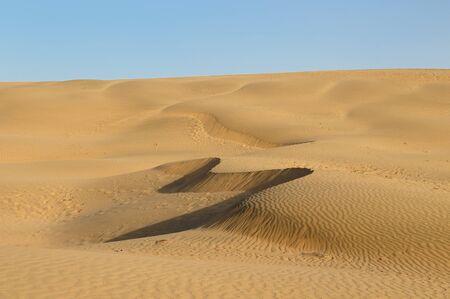 Thar desert in India, Sand dunes, Rajasthan