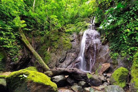 Colombia, wild Darien jungle of the Caribbean sea near Capurgana resort and Panama border. Central America. Waterfall into the jungle Stock Photo