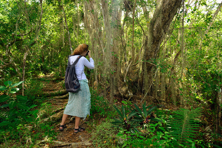 Relaxing tourist on the trekking in the jungle on Dominican Republic. Forest of the Del Este national park close the capital city Santo Domingo Imagens