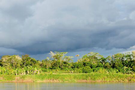 Peru, Peruvian Amazonas landscape. The photo present reflections of Amazon river