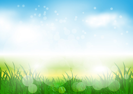 abstract spring background with meadow and mist
