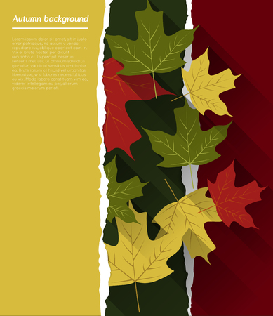 abstract autumn background with colorful leafs, torn paper, flat shadow effect Vector