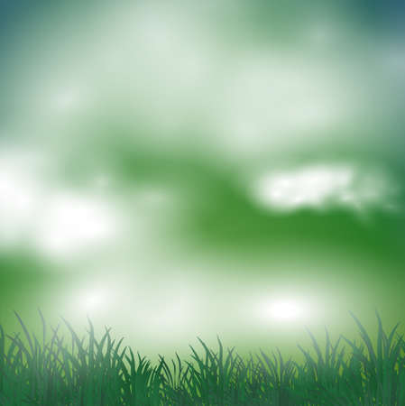 mist: abstract spring background with meadow and mist