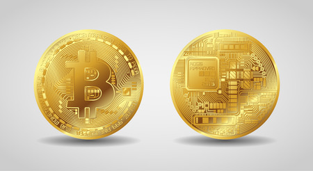 vector gold bitcoin front and back side Ilustrace