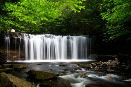 Waterfall in the Forest photo