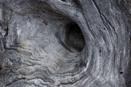 Nature Abstract – Naturally Weathered Wood Imagens