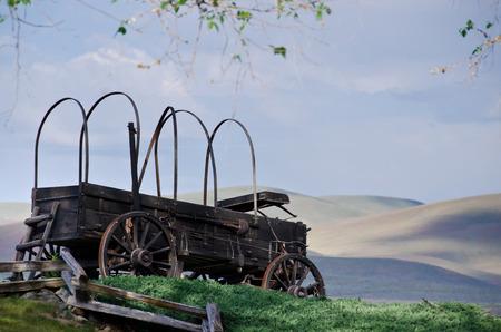 covered wagon: Covered Wagon At The Edge Of The Desert