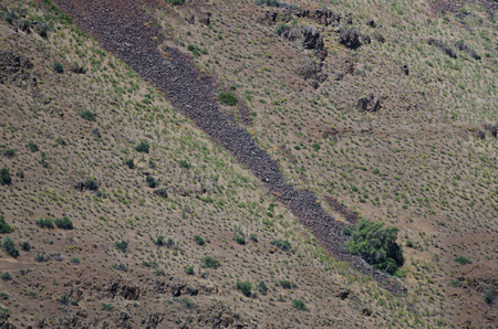 scars: Nature Abstract: Scars of Landslides on the Slopes of Hells Canyon