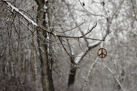 Frozen Peace Sign Hanging Alone in the Winter Forest Stock Photo