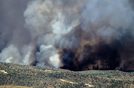 raging: Dense Black Smoke Rising from the Raging Wildfire