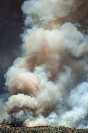sagebrush: Dense White Smoke Rising from the Raging Wildfire