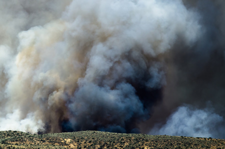 wildfire: Dense Black Smoke Rising from the Raging Wildfire