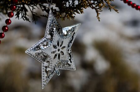 star ornament: Silver Star Christmas Ornament Decorating an Outdoor Tree