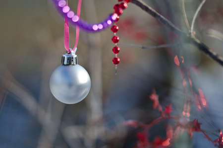 christmas beads: Christmas Beads and Ornaments Decorating an Outdoor Tree