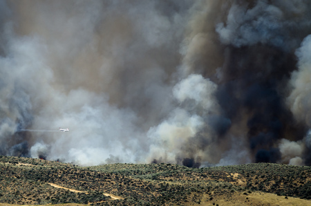 wildfire: Aircraft Flying Through the Dense White Smoke Rising from the Raging Wildfire