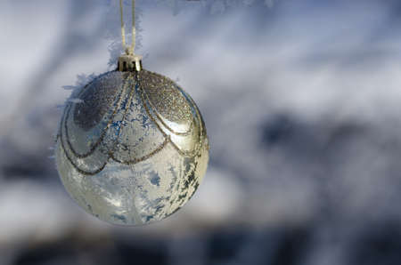 Frozen Golden Christmas Ornament Decorating a Snowy Outdoor Tree Stock Photo