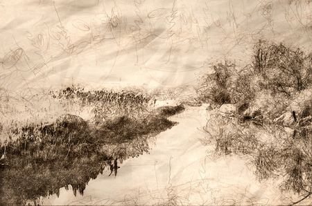 Sketch of a Frosty Morning in the Marsh