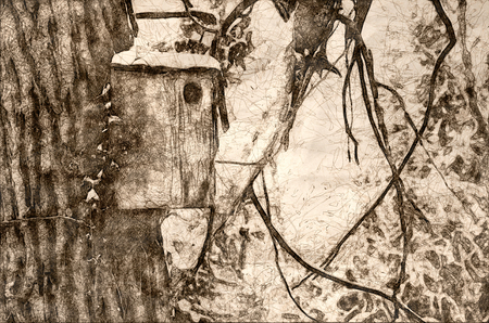 Sketch of a Wooden Birdhouse after a Fresh Snowfall Imagens - 117487257