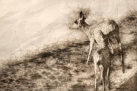 Sketch of a Family of Deer Walking Along the Water's Edge Foto de archivo - 117487288