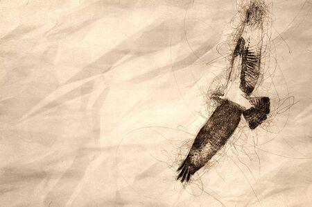 Sketch of an Osprey Flying in a Blue Sky