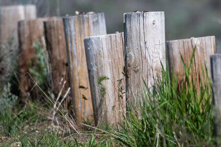 Weathered Wooden Fence on a Spring Morning Reklamní fotografie - 127765000
