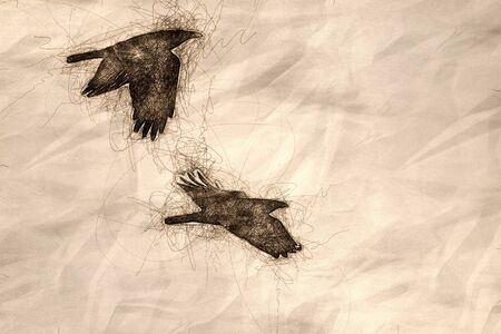 Sketch of Two Common Black Ravens Flying Over the Canyon Floor