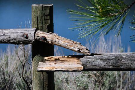 Broken Wooden Fence Rails Standing Beside a Summer Lake