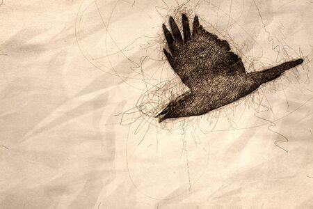 Sketch of a Common Black Raven Flying in a Blue Sky