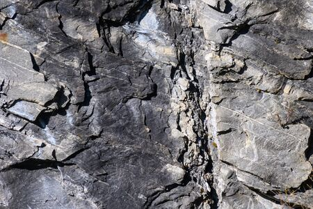 Nature Abstract: Pattern Created by Cracks and Crevices in a Solid Rock Wall