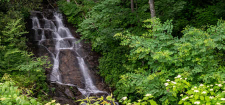 Refreshing Wood fin Cascade Along the Blue Ridge Parkway