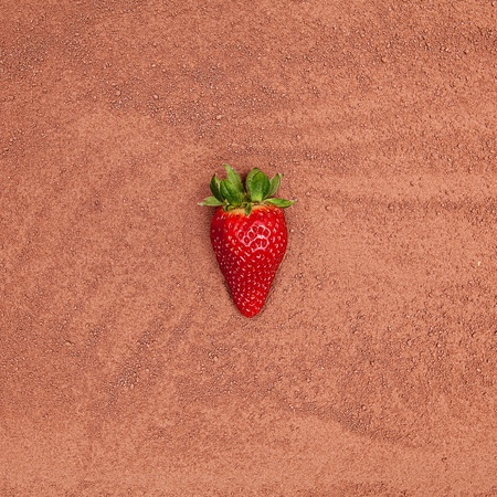 cocoa powder with strawberry photo