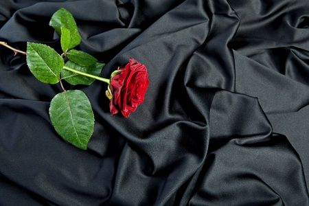 red rose on black silk photo