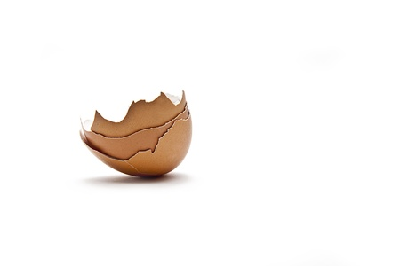 osterfest: brown egg on white background