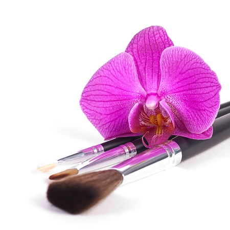 make up brush: powder brushes  with orchid white background