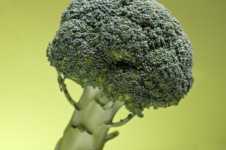 Broccoli on Green Background photo