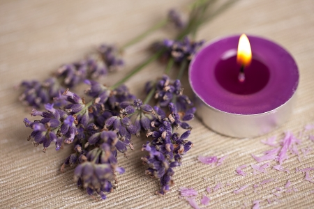 candel with flamme with lavender Stock Photo - 12508336