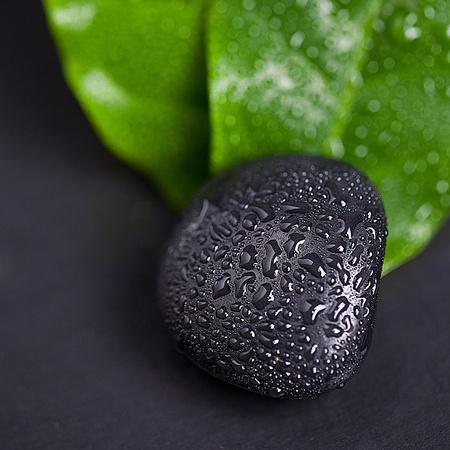 hydrophobic: Green leaf and Black Stone with water drops