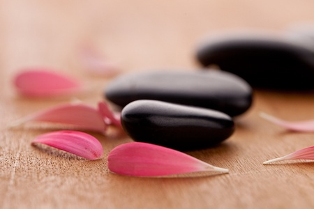 hydrophobic: black stones with leaves Stock Photo